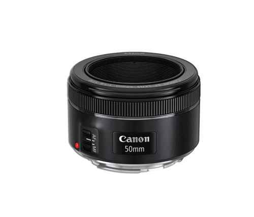 Top 8 Best Canon Lenses to Buy Online