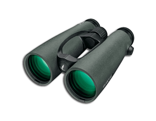 Top 10 Best Binoculars to Buy Online