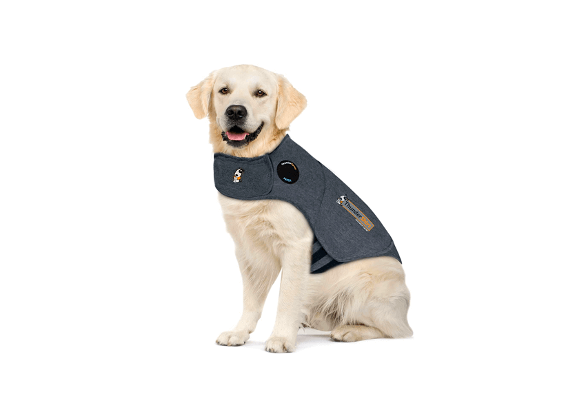 Top 15 Best Weighted Vest for Dog to Buy Online