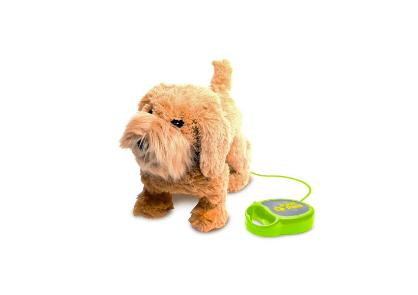 Top 15 Best Remote Control Toys for Dogs to Buy Online
