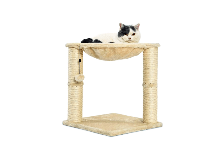 Top 10 Best Cat Trees to Buy Online (DYI)